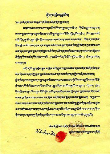 《多杰羌佛第三世》-多杰仁增仁波且祝賀三世多杰羌佛 (118-119頁)