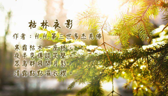 H.H.第三世多杰羌佛詩詞歌賦作品:枯林夜影