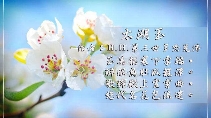 H.H.第三世多杰羌佛詩詞歌賦作品:太湖玉
