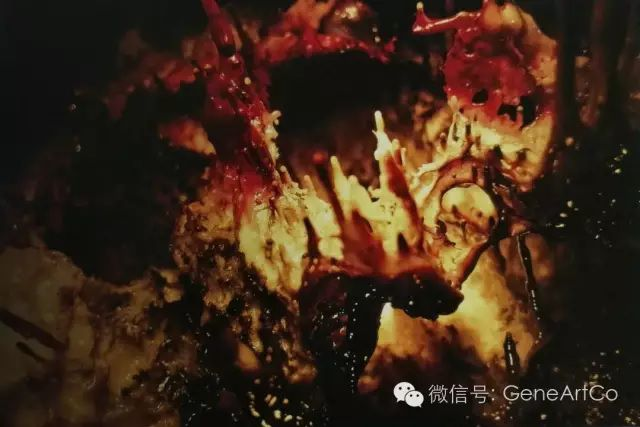 H.H.第三世多杰羌佛韻雕作品:無盡視野之外的世界