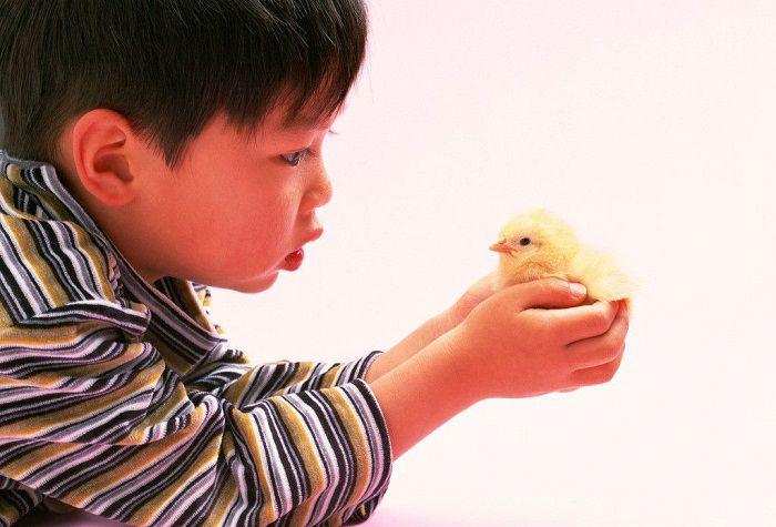 孩子被喂活蝌蚪?……揭秘父母應該教會孩子什麼