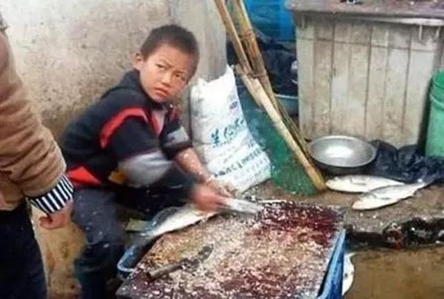 """從網紅""""殺魚弟""""的人生悲哀,反思父母的責任(東山)"""