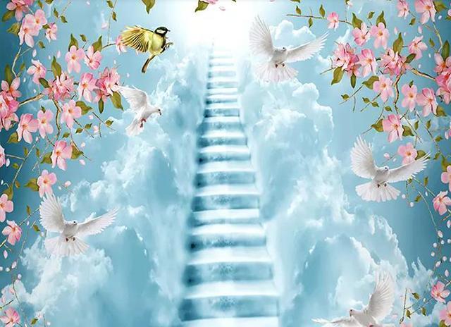 運頓多吉白菩提會-為了能利益大眾,我會一步步向前(鵬翔)