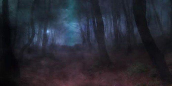 """當鬼魂撲來時,我體驗到了 """"南無第三世多杰羌佛""""佛號的巨大威力!(華梅)"""