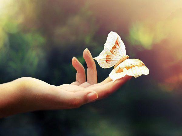 記住這些生活細節,您的舉手投足都在慈悲護生(慈鵬)