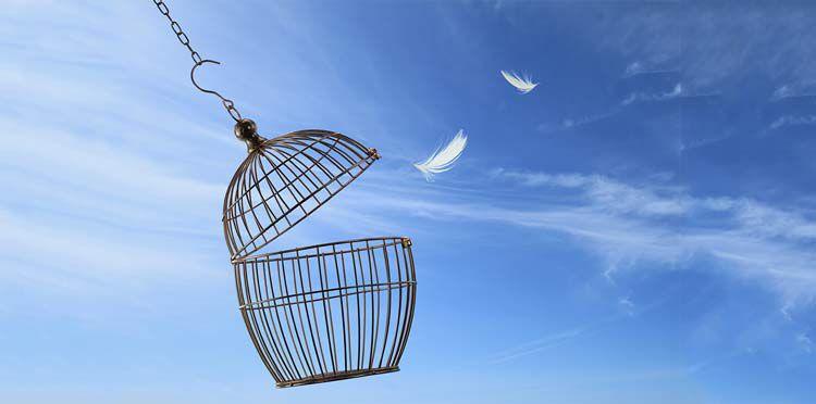 丟掉心靈上的鳥籠(在路上)