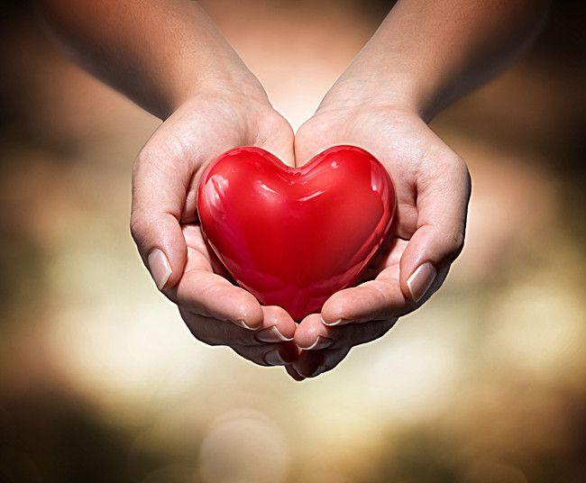 真正慈悲的放生是自然而然,毫不猶豫,刻不容緩的(吳紅霞、紅珊瑚)