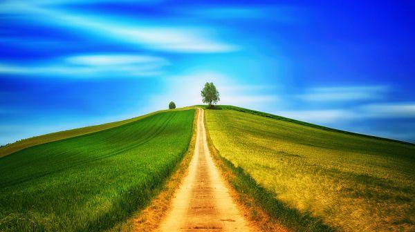 """華藏學佛苑-我終於找到了""""回家""""的路(拈花一笑)"""