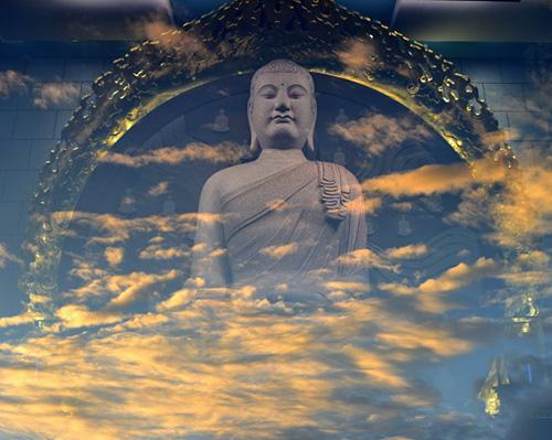 華藏學佛苑-從了悟無常、因果修行中,我看到了佛法的真實不虛(無相微塵)