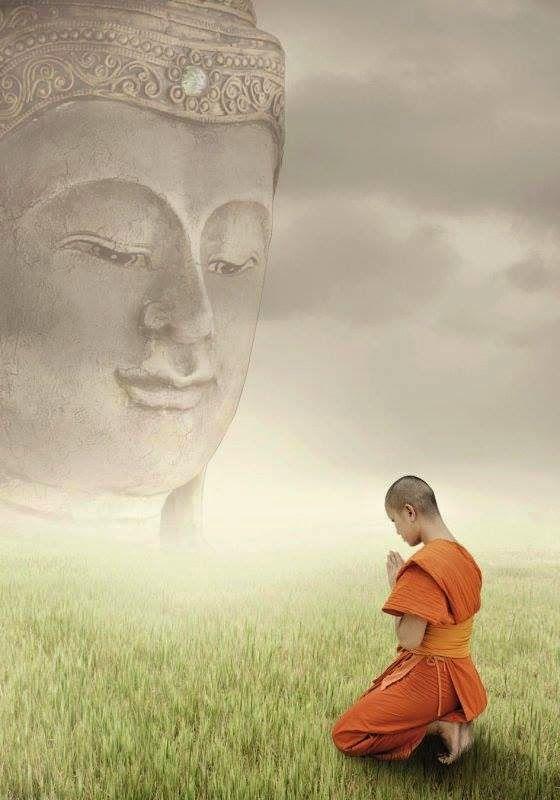 佛教正法中心-美國加州野火帶給我的省思(絳秋倫珠)
