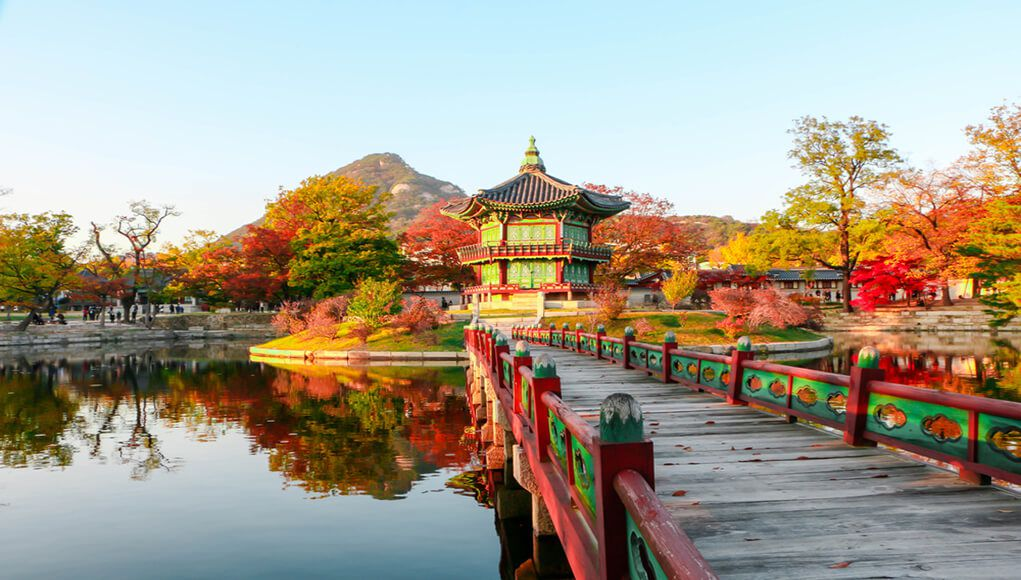 華藏學佛苑-怎樣在寺廟裡做義工來培福?(慈松、葵心)