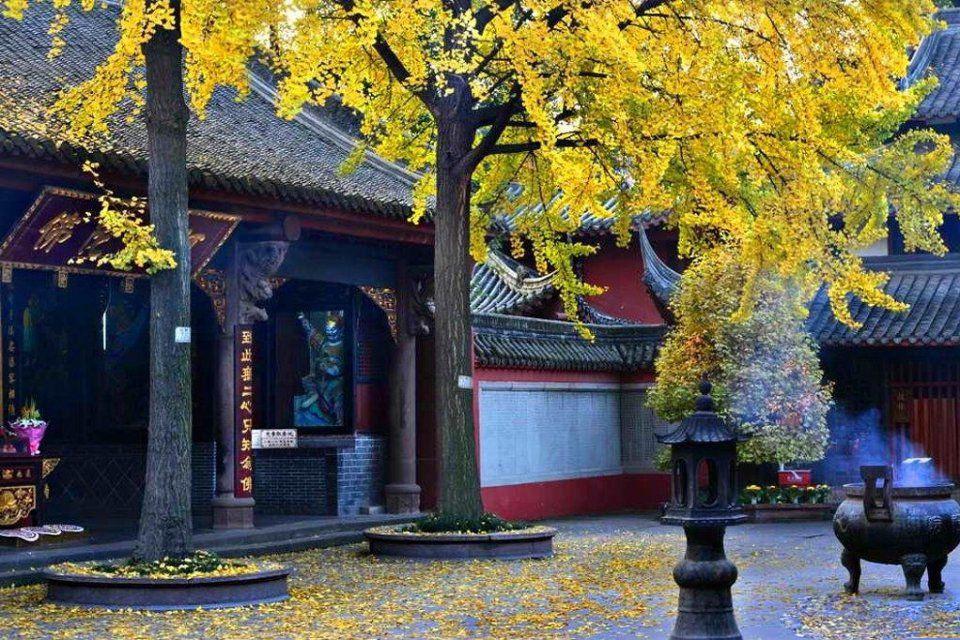 「佛門觀察」:小心,這三類寺廟和僧人千萬別供養,否則會倒楣(葵心)
